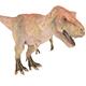 Tyrannosaurus - 3DOcean Item for Sale