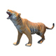 Bengol Tiger Rigged and Animated 3D model - 3DOcean Item for Sale