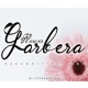 Garbera Flower - GraphicRiver Item for Sale