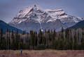 Photographer photographing Mount Robson - PhotoDune Item for Sale
