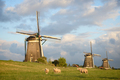 Sheep with windmills and clouds - PhotoDune Item for Sale