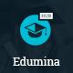 Edumina - LMS & Education WordPress Theme - ThemeForest Item for Sale