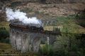 Glenfinnan viaduct with steam train - PhotoDune Item for Sale