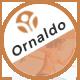 Ornaldo | Sport Shop WooCommerce WordPress Theme - ThemeForest Item for Sale