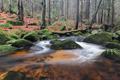 Rapids on the Jedlova creek, Jizera Mountains, Czech Republic - PhotoDune Item for Sale