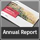 Landscape Infographic Report - GraphicRiver Item for Sale