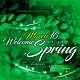 Spring Event Party Flyer - GraphicRiver Item for Sale