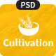 Cultivation PSD Template - ThemeForest Item for Sale