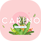 Carino - A Modern Elegant Typeface - GraphicRiver Item for Sale