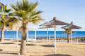 Sun umbrellas made of palm leaves on the beach - PhotoDune Item for Sale