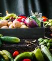 Vegetables - PhotoDune Item for Sale
