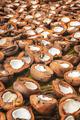 BORNEO / SARAWAK / MALAYSIA / JUNE 2014: Farmer opening coconuts - PhotoDune Item for Sale