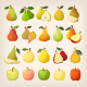 Kinds of Pears with Names - GraphicRiver Item for Sale