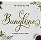 Bunglone - GraphicRiver Item for Sale