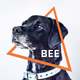 Bee - Animal & Pet Services Google Slides Template - GraphicRiver Item for Sale