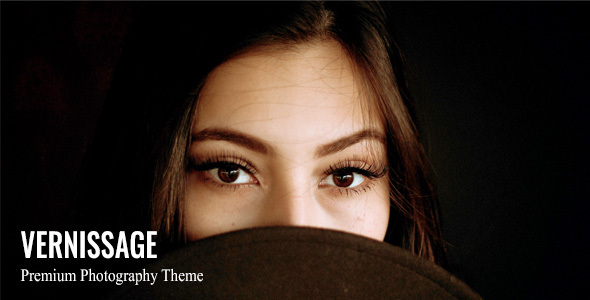 Vernissage - Photography WordPress Theme Download