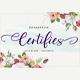 Certifies Script + Ornaments - GraphicRiver Item for Sale