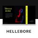 Hellebore - Creative Google Slide Template - GraphicRiver Item for Sale