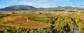 Landscape with vineyards at La Rioja, Spain - PhotoDune Item for Sale