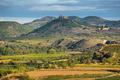 Vineyard in La Rioja, the largest wine producing region in Spain - PhotoDune Item for Sale