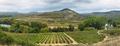 Vineyards and Davalillo castle, La Rioja (Spain) - PhotoDune Item for Sale