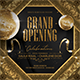 Grand Opening Promotional Flyer - GraphicRiver Item for Sale