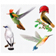 Tropical Birds and Hummingbird on a Transparent Background - GraphicRiver Item for Sale