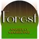Forest Birds Sounds - AudioJungle Item for Sale