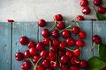 Cherries - PhotoDune Item for Sale