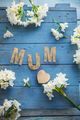 Mothers day - PhotoDune Item for Sale