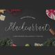 Blackcurrant - GraphicRiver Item for Sale