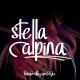 StellaAlpina Font TRIO - GraphicRiver Item for Sale