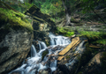 Stony well in colorful green forest with little waterfall - PhotoDune Item for Sale