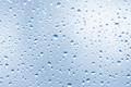 Rain drops - PhotoDune Item for Sale