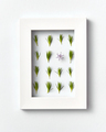 Plant frame with green pine needles pattern on a light background. Greeting card - PhotoDune Item for Sale