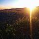 Sunrise - AudioJungle Item for Sale