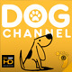 Dog Channel Broadcast Pack - VideoHive Item for Sale