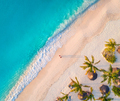 Aerial view of umbrellas, palms on the sandy beach - PhotoDune Item for Sale