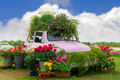 Flowers composition with pink retro car - PhotoDune Item for Sale