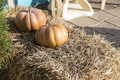 Composition with pumpkins. - PhotoDune Item for Sale