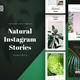 Natural Instagram Stories - GraphicRiver Item for Sale