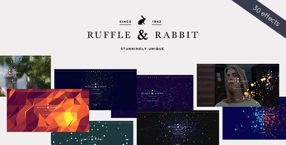 Rabbit - Exclusive Coming Soon WordPress Theme