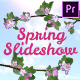 Spring Slideshow / Wedding Titles - VideoHive Item for Sale