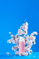Cherry blossom cosmetics concept. Pink creme tube with spring flowers on a sky blue background with - PhotoDune Item for Sale
