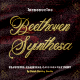 Beethoven Syinthesa - GraphicRiver Item for Sale