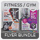 Fitness Flyer Bundle - GraphicRiver Item for Sale