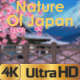 Nature Of Japan - VideoHive Item for Sale