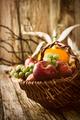 Thanksgiving Autumn Background - PhotoDune Item for Sale