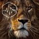 Lion Gnarls