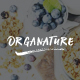 Organature | A Vibrant HTML Template for Organic Food, Store & Eco Products - ThemeForest Item for Sale